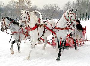 Туры в Карелию на Новый 2016 год